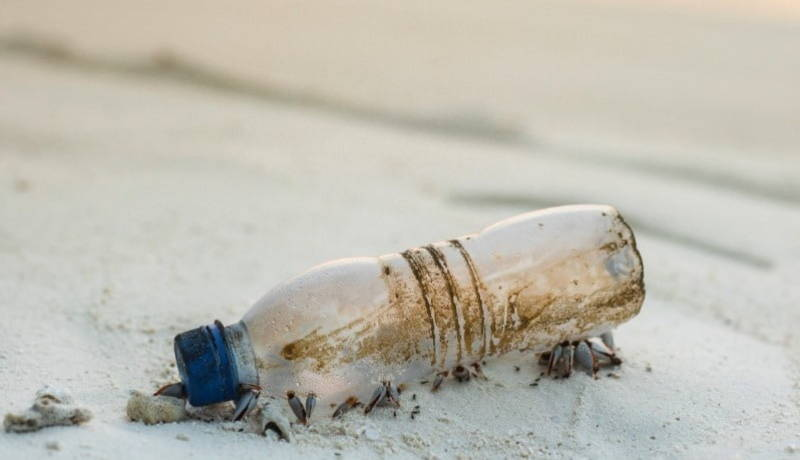 Decomposing plastic water bottle on beach.